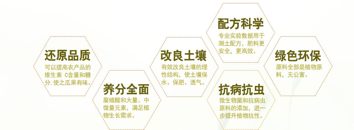 网站页面4.jpg